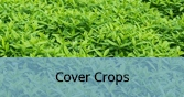 CoverCrops_Final